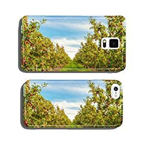 Rows of red apple trees cell phone cover case iPhone6