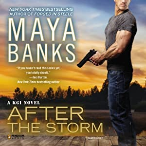 After the Storm Audiobook