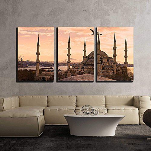 wall26 – 3 Piece Canvas Wall Art – The Blue Mosque, Sultanahmet Camii , Istanbul, Turkey. – Modern Home Decor Stretched and Framed Ready to Hang – 16 x24 x3 Panels