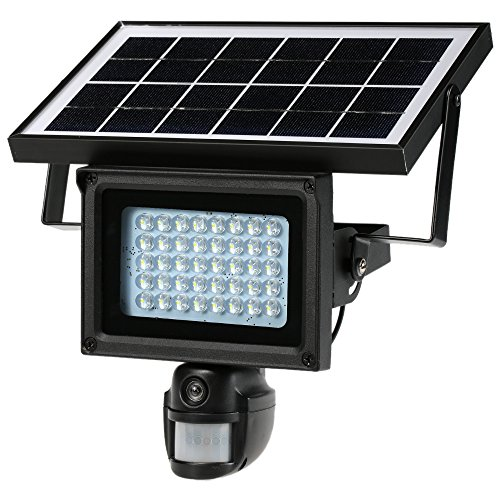 Vista Flood Lights