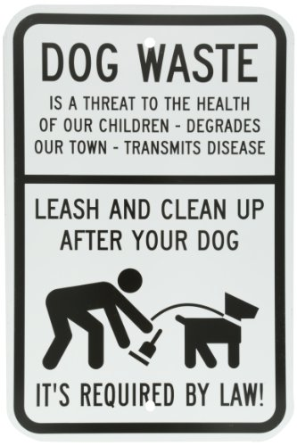 Top leash your dog for 2018