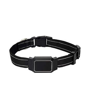Collares Tractive GPS Tracker para Perros Y Gatos - Accesorio Buscador De Mascotas A Prueba De