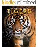 Tigers: Amazing Pictures & Fun Facts on Animals in Nature (Our Amazing World Series Book 10)