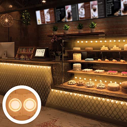 Storefront LED Lights LED Module Lights Pomelotree Waterproof Window Led Lights Business Decorative Lights 12V COB SMD LED Lights for Advertising Signs 200LM 20FT (2 Packs) (Warm White) - Lighting Window