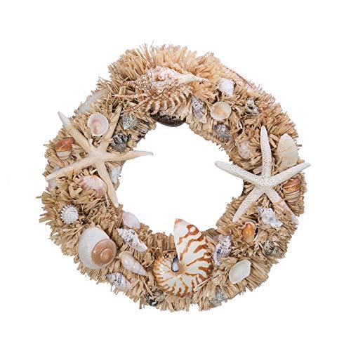 Starfish and Nautilus Seashell