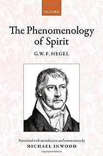 TERRY PINKARD PHENOMENOLOGY PDF