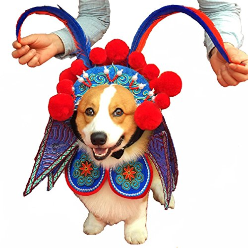 PetBoBo Pet Dog Cat Halloween Party Fancy Tidy Costume for Dog Cat Jacket Apparel - Original Design Beijing Opera WuSheng Actor, Female Warrior Role