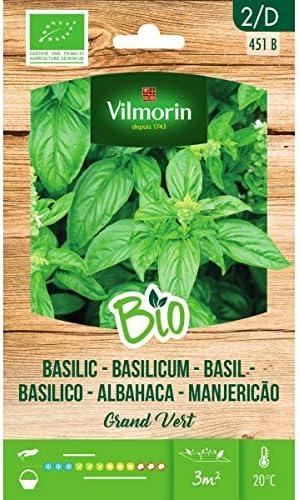 VILMORIN SEMILLAS ALBAHACA GRAND VERT BIO ECOLÓGICA: Amazon.es: Jardín