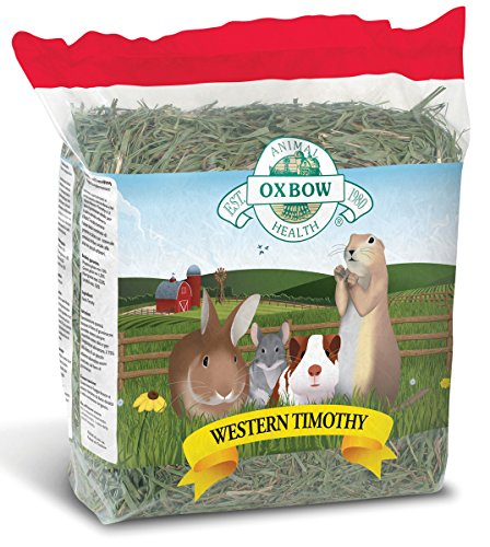 (Oxbow Animal Health Western Timothy Hay For Pets, 50-Pound)