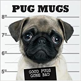 Pug Mugs Good Pugs Gone Bad Willow Creek Press 0709786012466 Amazon Com Books