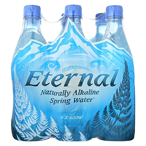 Eternal Naturally Artesian Water - Case of 4 - 600 ml by Eternal Artesian Water