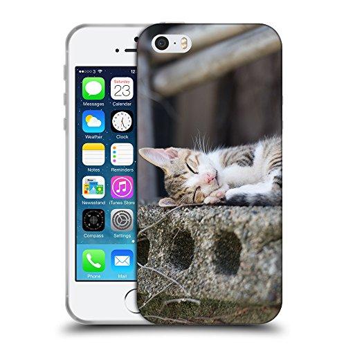 Just Phone Cases Coque de Protection TPU Silicone Case pour // V00004212 chaton mignon dormant sur dalle // Apple iPhone 5 5S 5G SE