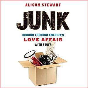 Junk Audiobook