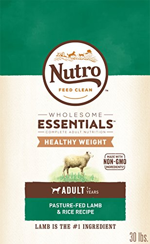 Top 10 Nutro Lamb Dry Dog Food