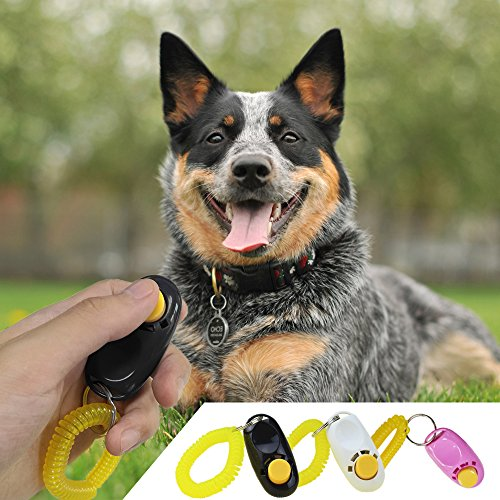 chic Vizpet Pack of 3 Dog Training Button Clicker with Wristband