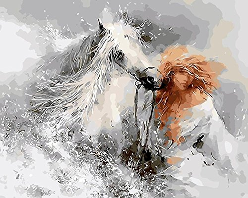 JynXos DIY Paint By Number 16 X 20 Kit White Horse and Woman 1 Without Wooden Frame