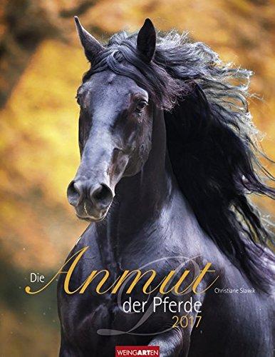 die-anmut-der-pferde-kalender-2017