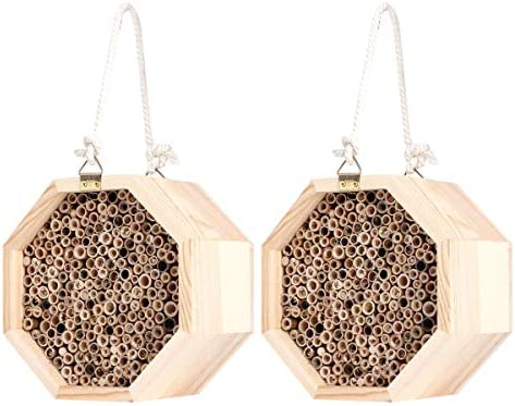 Yuehuam 2 Stück Bienenhaus Holz Handgefertigte Insekten Zimmer Bambus Hohlrohre Hotel Nistkasten für Gartendekoration im Freien