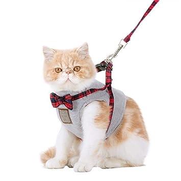 V.JUST Conjunto De Arnés Y Correa De Chaleco para Gato con Arnés De Malla Ajustable Estilo Británico Y Lindo Collar con Lazo,S: Amazon.es: Hogar
