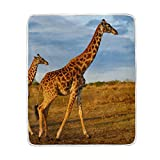 Cooper girl Africa Giraffe Throw Blanket Soft Warm Bed Couch Blanket Lightweight Polyester Microfiber 50x60 Inch
