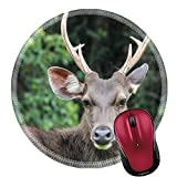 Liili Round Mouse Pad Natural Rubber Mousepads Deer are wild animals in the wild Food is typical grass Usually found in grasslands Turrets Good a natural Shineys 29202227