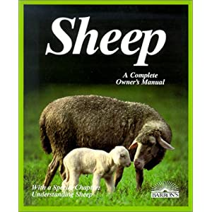 Sheep (Complete Pet Owner's Manuals) 43