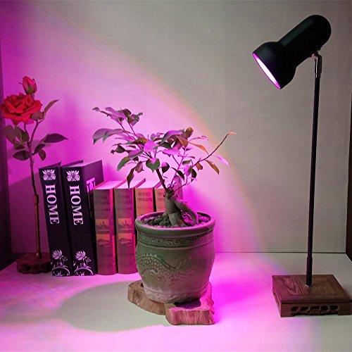 30W Led Plant Grow Lights Table Desk Lamp Stand Height 24...