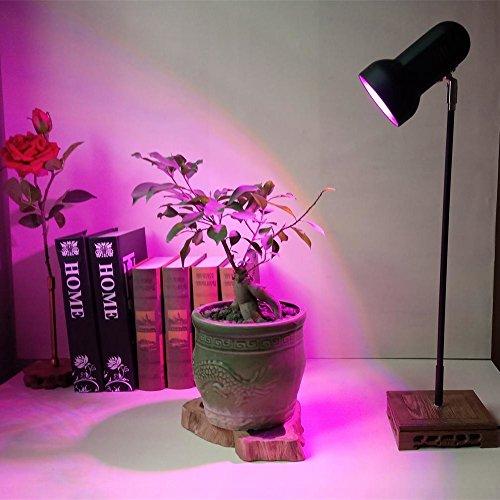 220V Led 50 Watt Grow Light