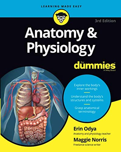 Anatomy and Physiology For Dummies, 3rd Edition (For Dummies (Math & Science))