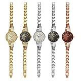 Montres Carlo IP Bracelet Watch with IP Case 4304