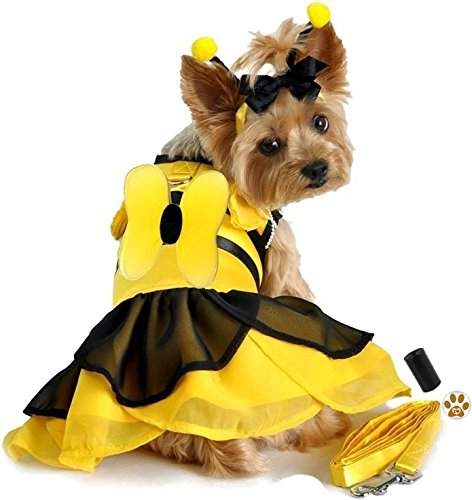 "Queen Of Felines Cat Costumes (Bumblebee Winged Fairy Antennae Dress Costume with Leash, baggies and Pin Accessory for Dog Sizes XS thru L (Large – Chest 19-21"", Neck 16-19"", Yellow/Black))"
