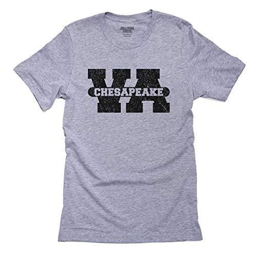 Chesapeake, Virginia VA Classic City State Sign Men's T-Shirt]()