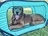 Bark Brite Pop Open Collapsible Travel Crate in 2