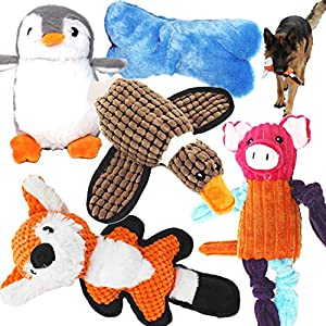 Jalousie 5 Pack Value Bundle Dog Toys Assortment Dog Plush Toys Dog Squeaky Toys Assortment Puppy Pet Mutt Dog Toy Dog Squeak Toy for Medium Large Dogs 19