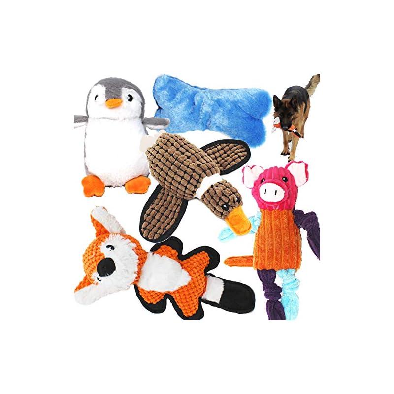 dog supplies online jalousie value bundle dog toys assortment 5 pack dog plush toys dog squeaky toys assortment