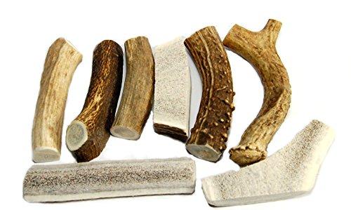 Premium Deer Elk Antler Pieces product image
