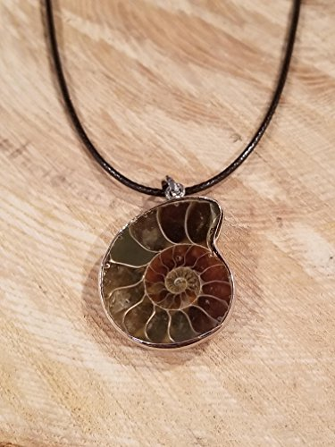 (Real Ammonite Fossil Pendant Leather Necklace Primitive Ocean Shell Jewelry Hippie Boho Handmade Sea Collection (N396))