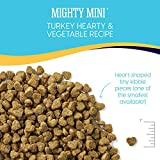 Solid Gold - Mighty Mini with Natural Turkey and