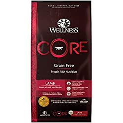 Wellness Core Natural Grain Free Dry Dog Food, Lamb, 22-Pound Bag