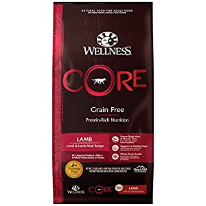 Wellness CORE Natural Grain Free Dry Dog Food, Lamb, 22-Pound Bag