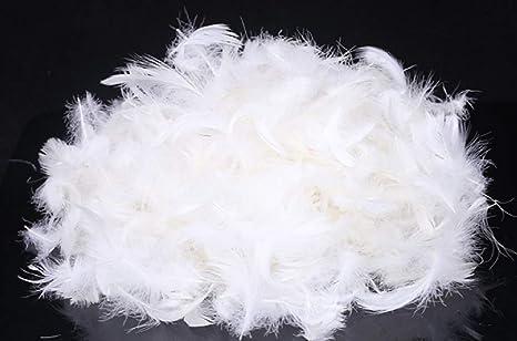 Amazon.com: Relleno de plumón de ganso a granel natural 5 ...
