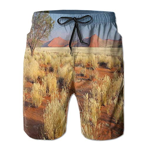 lsrIYzy Men Swim Trunks Beach Shorts,Acacia Tree Desert Sossusvlei Namibia Southern Africa Photo M