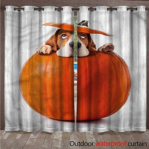 BlountDecor Pumpkin Outdoor Curtain Panel for Patio Funny Beagle Puppy Hiding W120 x L96
