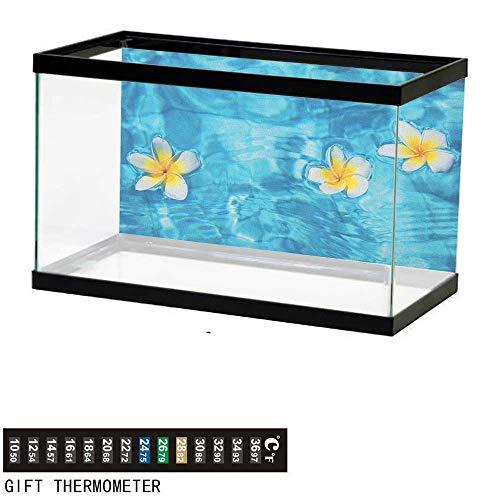 Jinguizi HawaiianAquarium BackgroundTropical Frangipani Flower Floating in Water Pool Summertime Ecofriendly72 L X 24