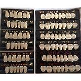 JSP®Polymer Resin Denture Teeth A2 Upper+Lower Dental 12 Sets (dt232a2)
