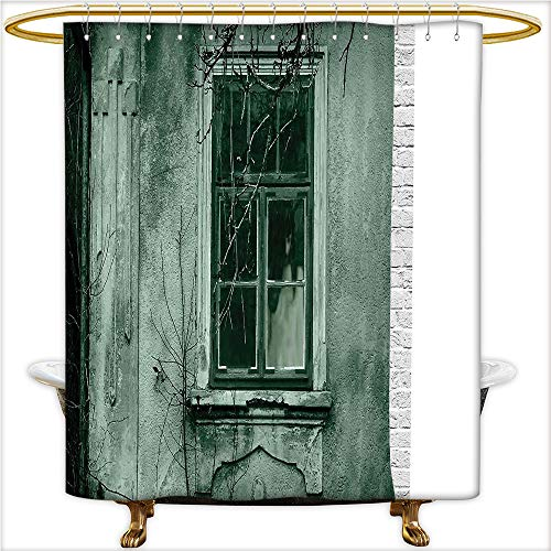 Qinyan-Home Decor Shower Curtains View of a Dramatic Haunted Creepy Environment Mystery Rear Theme for Gray. Shower Curtain Bathroom,Water-Repellent. W54 x H78 Inch