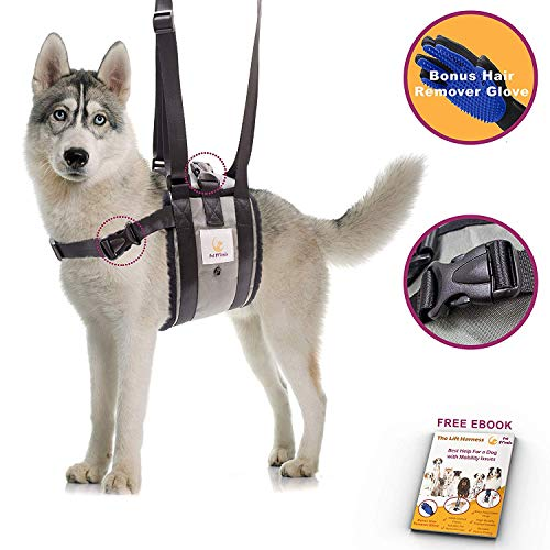 Veterinarian Approved Dog Support Harness +...
