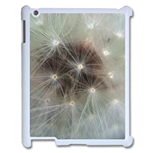 Customized Case for Ipad 2,3,4 - The swirling of the dandelion ( WKK-R-514457 )