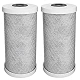 water purifiers for puerto rico Universal Carbon High Flow Replacement Water Filter (2-Pack)