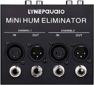 P Prettyia Eliminador de Zumbidos, 2 Canales, Cleanbox para Audio Estéreo